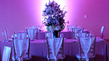 purple lit room with table setting